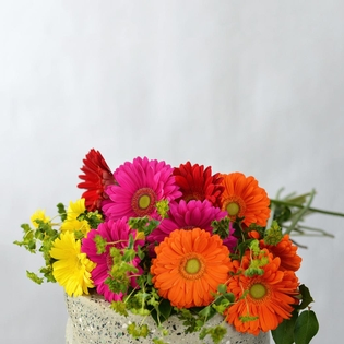 15 Gerberas with Greens